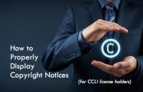 CopyrightDisplay