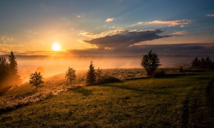 He Gives and Takes Away: Worship When Faith Is Under Fire