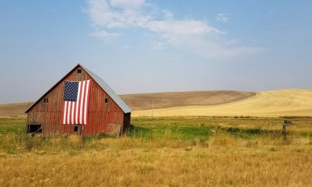 HELPFUL HINTS FOR YOUR JULY 4TH WORSHIP SERVICE